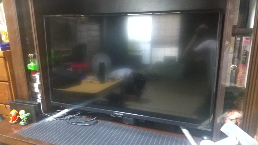 ネクシオン テレビ